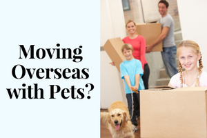 Moving Overseas with Pets_.png